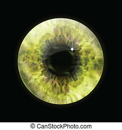olho, vetorial, macro., pupila, amarela