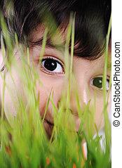 olhos, capim, closeup, planta, criança