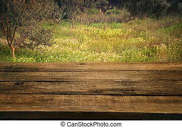 olijf boomgaard, met, hout, tafel