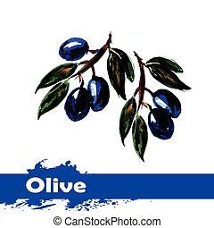 olijven, hand, watercolor, achtergrond., fruit, getrokken, witte , schilderij