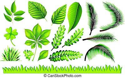 olik, gräs, grönt lämnar, slagen