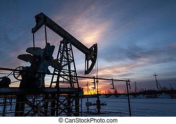 olio, pump.