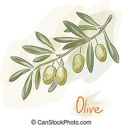 oliv, branch., vattenfärg, style.