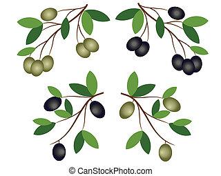 oliv, dekor