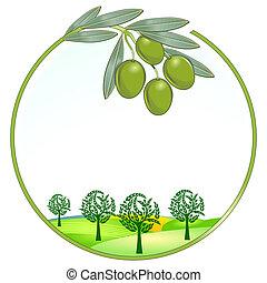 oliv, enastående, landskap