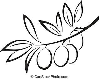oliva, bacche, nero, ramo, icona