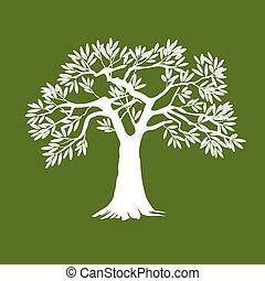 oliva, bianco, albero., illustration., vettore