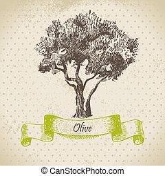 oliva, disegnato, albero., illustrazione, mano