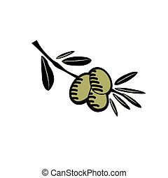 oliva, disegnato, illustrazione, mano