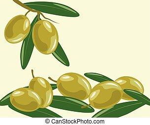 oliva, foglie, ramo