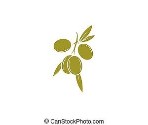 oliva, logotipo, olio, sagoma, vettore