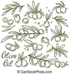 oliva, rami, grafico, set