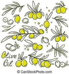 oliva, set, ramo