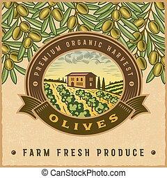 oliva, vendemmia, raccogliere, colorito, etichetta
