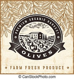 oliva, vendemmia, raccogliere, etichetta
