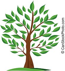 oliva, verde, etichette, albero, vector.