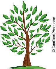 olive, arbre vert, logo