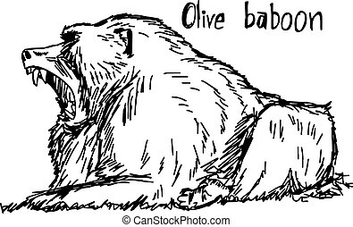 olive baboon open mouth - vector illustration sketch hand drawn with black lines, isolated on white background
