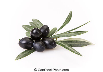 Olive - Black olives with leaves isolated on white