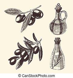 Olive Branch Bottle Set Hand Drawn Vector