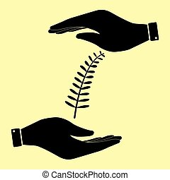 Save or protect symbol by hands. - Olive branche sign. Save...
