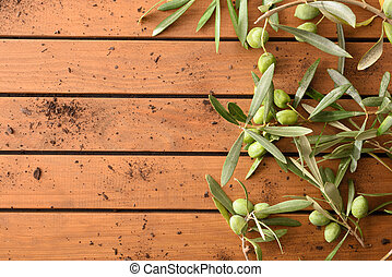 Olive branches with olives on table background top