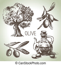 olive, dessiné, ensemble, main