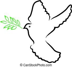 olive, duif