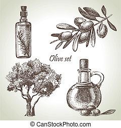 olive, getrokken, set, hand