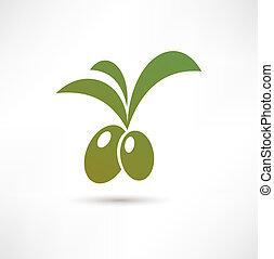 olive, icône