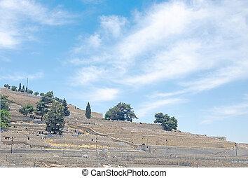 Olive Mount at Jerusalem