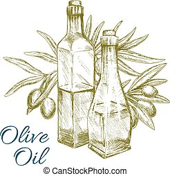 Olive oil and green olives branch vector sketch