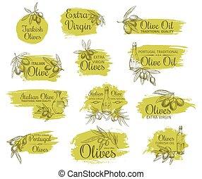 Olive oil bottle with branch and fruit sketch set
