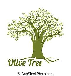 Olive oil design. - Olive oil design over white background,...