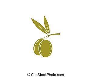 olive oil logo template vector