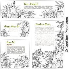 Olive oil market vector sketch banners or posters - Olive...