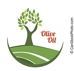 olive oil over white background vector illustration