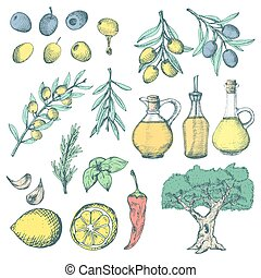 Olive products ans supplements set. Colorful sketchy illustrations on white background.