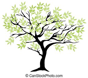 olive tree branch - illustration of an olive tree