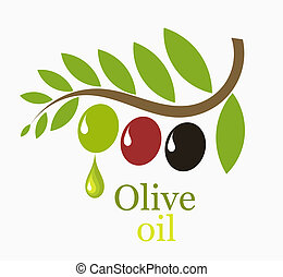 Olive tree branch with fruits - symbolic vector illustration