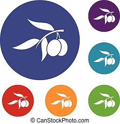 Olive tree branch with two olives icons set