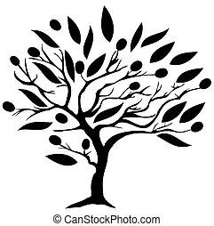 olive tree  - vector olive tree