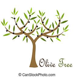 Olive tree with black olives. Vector illustration