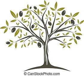 olive, unique, arbre