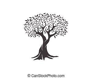 olive, vector, boompje, illustratie