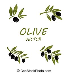 olive, vector, set, iconen