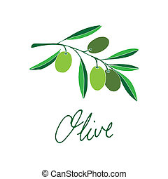 Olive with typography on simple white background