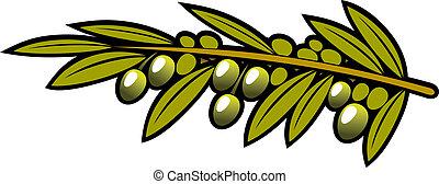 oliven, belaubt, zweig, hängender