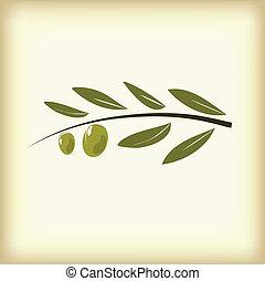 oliven, leaves., zweig