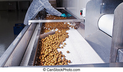 olivener, ind, en, oparbejdelse, maskine